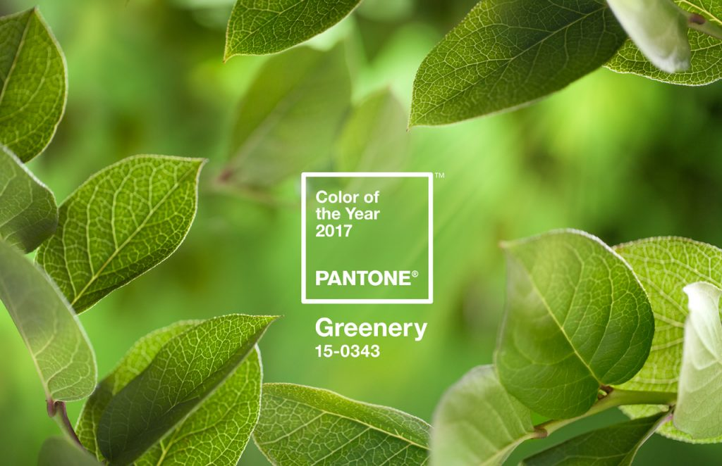 greenery-medio-ambiente